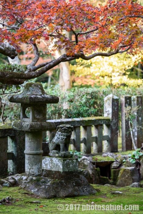 長崎 金比羅神社