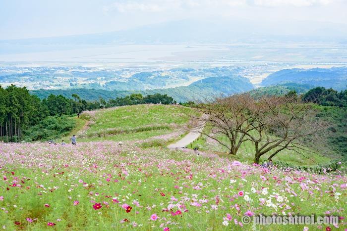 長崎白木峰高原
