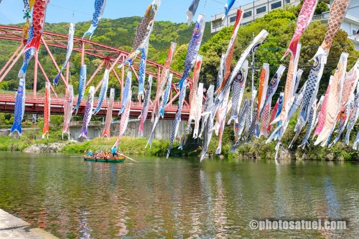 川上峡 鯉のぼり